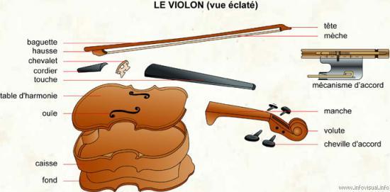 Les différentes parties du violon
